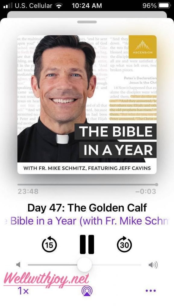 bible in a year